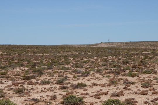S2719 - habitat overview