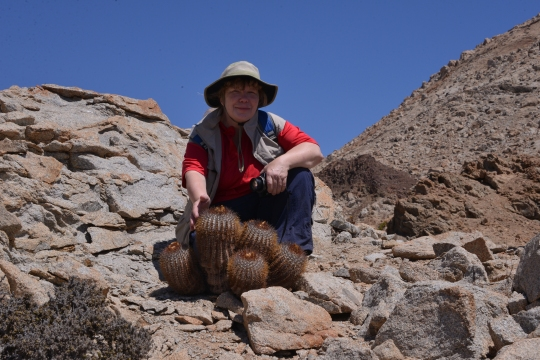 Angie posing with the plant we first saw here in 2003 and christened 'Benjy's plant' - Copiapoa longistaminea fa