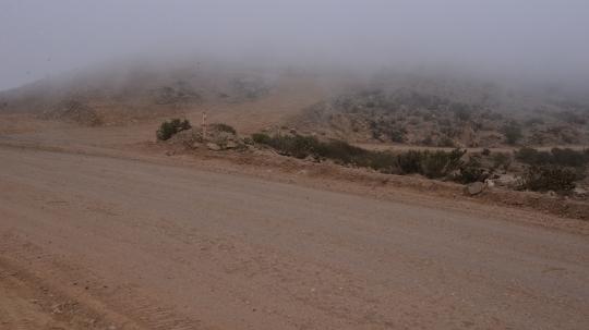 S2889 - fog