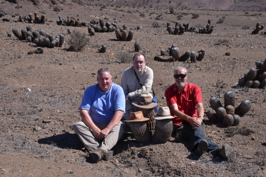 The Tres Amigos - Brendan, Jonathan and Paul with Copiapoa cinerea