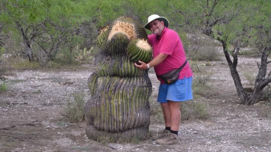 Echinocactus platyacanthus - S3120