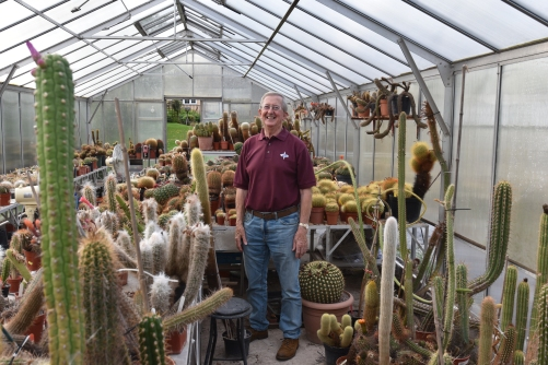 Maurice Williams and part of his collection of Matucana